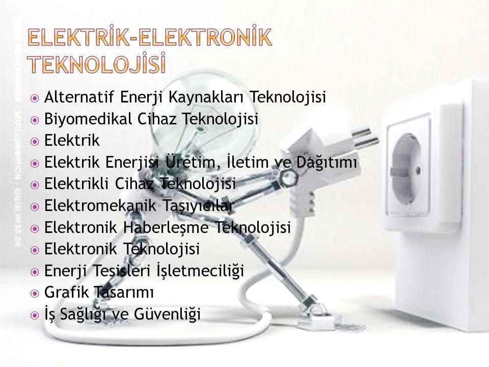  Alternatif Enerji Kaynakları Teknolojisi  Biyomedikal Cihaz Teknolojisi  Elektrik  Elektrik Enerjisi Üretim, İletim ve Dağıtımı  Elektrikli Cihaz Teknolojisi  Elektromekanik Taşıyıcılar  Elektronik Haberleşme Teknolojisi  Elektronik Teknolojisi  Enerji Tesisleri İşletmeciliği  Grafik Tasarımı  İş Sağlığı ve Güvenliği