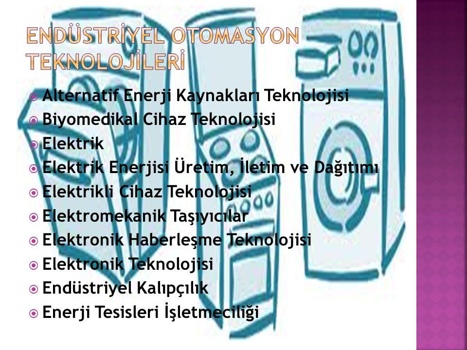  Alternatif Enerji Kaynakları Teknolojisi  Biyomedikal Cihaz Teknolojisi  Elektrik  Elektrik Enerjisi Üretim, İletim ve Dağıtımı  Elektrikli Cihaz Teknolojisi  Elektromekanik Taşıyıcılar  Elektronik Haberleşme Teknolojisi  Elektronik Teknolojisi  Endüstriyel Kalıpçılık  Enerji Tesisleri İşletmeciliği