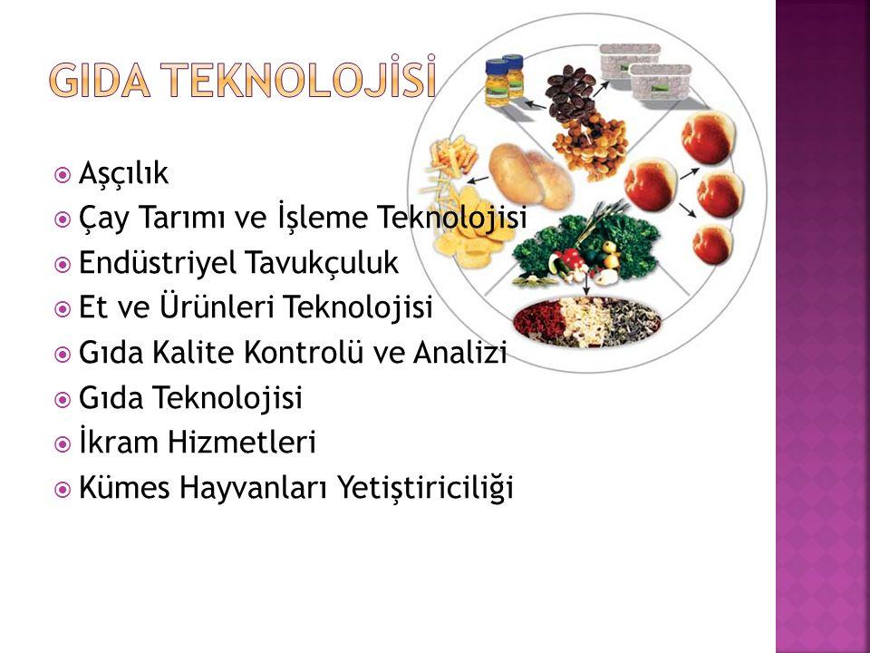  Aşçılık  Çay Tarımı ve İşleme Teknolojisi  Endüstriyel Tavukçuluk  Et ve Ürünleri Teknolojisi  Gıda Kalite Kontrolü ve Analizi  Gıda Teknolojis