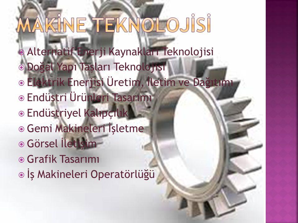  Alternatif Enerji Kaynakları Teknolojisi  Doğal Yapı Taşları Teknolojisi  Elektrik Enerjisi Üretim, İletim ve Dağıtımı  Endüstri Ürünleri Tasarımı  Endüstriyel Kalıpçılık  Gemi Makineleri İşletme  Görsel İletişim  Grafik Tasarımı  İş Makineleri Operatörlüğü