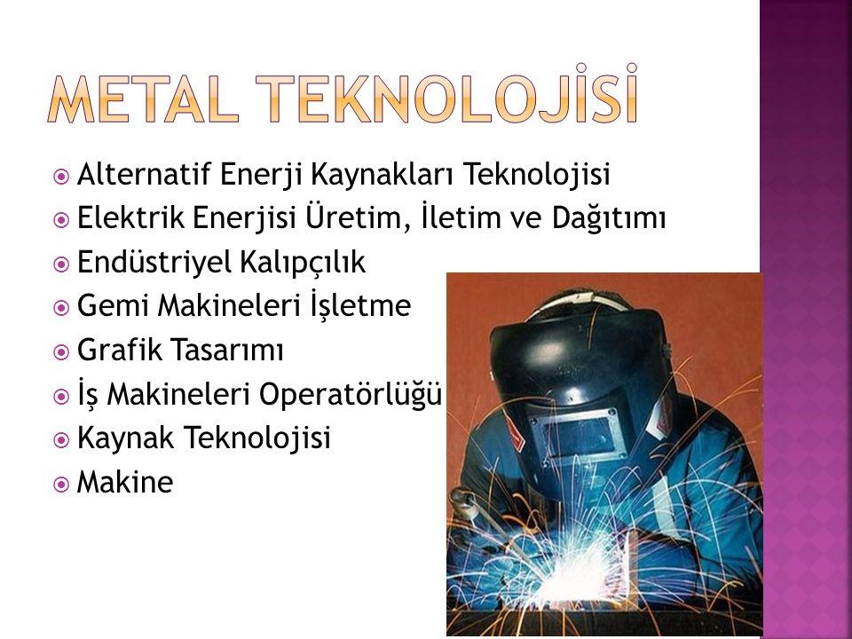  Alternatif Enerji Kaynakları Teknolojisi  Elektrik Enerjisi Üretim, İletim ve Dağıtımı  Endüstriyel Kalıpçılık  Gemi Makineleri İşletme  Grafik Tasarımı  İş Makineleri Operatörlüğü  Kaynak Teknolojisi  Makine