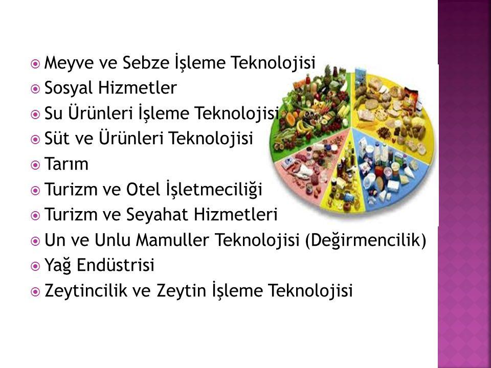  Meyve ve Sebze İşleme Teknolojisi  Sosyal Hizmetler  Su Ürünleri İşleme Teknolojisi  Süt ve Ürünleri Teknolojisi  Tarım  Turizm ve Otel İşletmeciliği  Turizm ve Seyahat Hizmetleri  Un ve Unlu Mamuller Teknolojisi (Değirmencilik)  Yağ Endüstrisi  Zeytincilik ve Zeytin İşleme Teknolojisi
