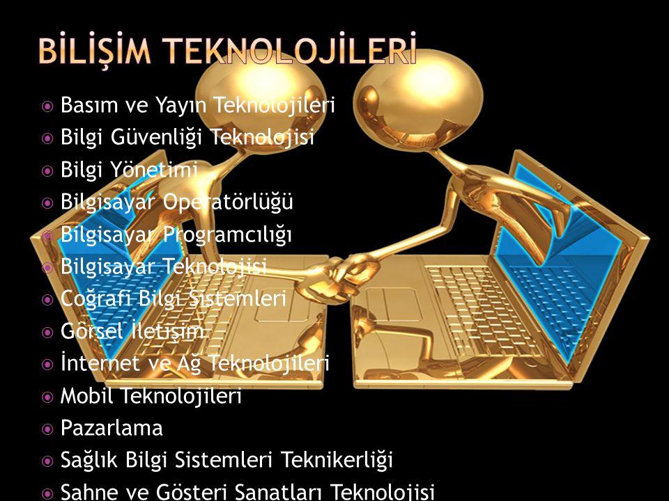  Basım ve Yayın Teknolojileri  Bilgi Güvenliği Teknolojisi  Bilgi Yönetimi  Bilgisayar Operatörlüğü  Bilgisayar Programcılığı  Bilgisayar Teknolojisi  Coğrafi Bilgi Sistemleri  Görsel İletişim  İnternet ve Ağ Teknolojileri  Mobil Teknolojileri  Pazarlama  Sağlık Bilgi Sistemleri Teknikerliği  Sahne ve Gösteri Sanatları Teknolojisi