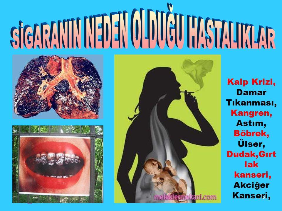 78 © Kalp Krizi, Damar Tıkanması, Kangren, Astım, Böbrek, Ülser, Dudak,Gırt lak kanseri, Akciğer Kanseri,