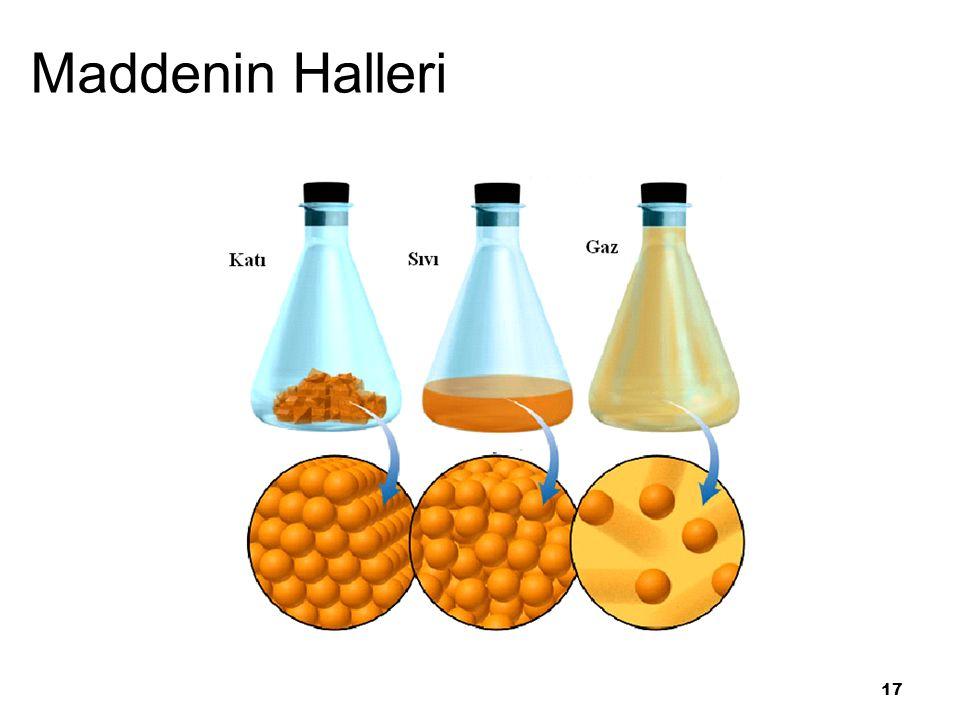 17 Maddenin Halleri