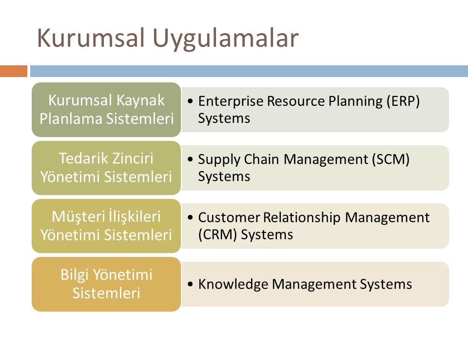 Kurumsal Uygulamalar Enterprise Resource Planning (ERP) Systems Kurumsal Kaynak Planlama Sistemleri Supply Chain Management (SCM) Systems Tedarik Zinc