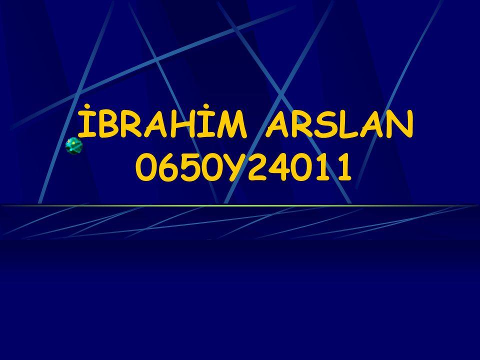İBRAHİM ARSLAN 0650Y24011