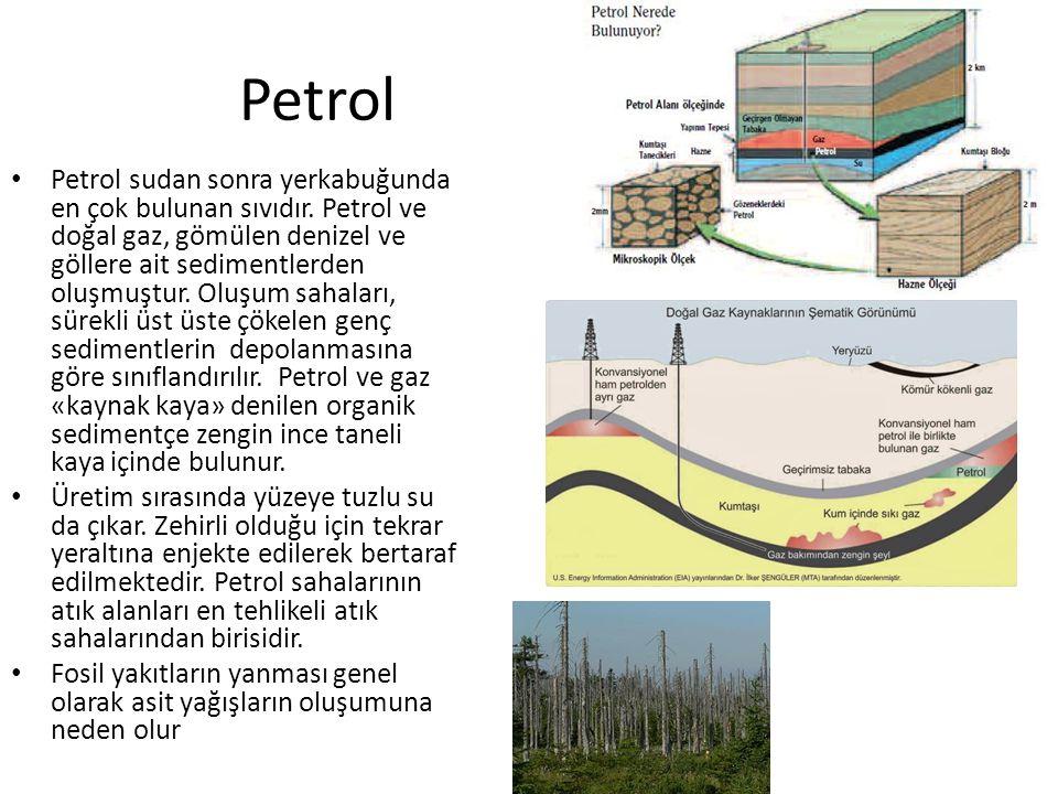 Petrol Petrol sudan sonra yerkabuğunda en çok bulunan sıvıdır.