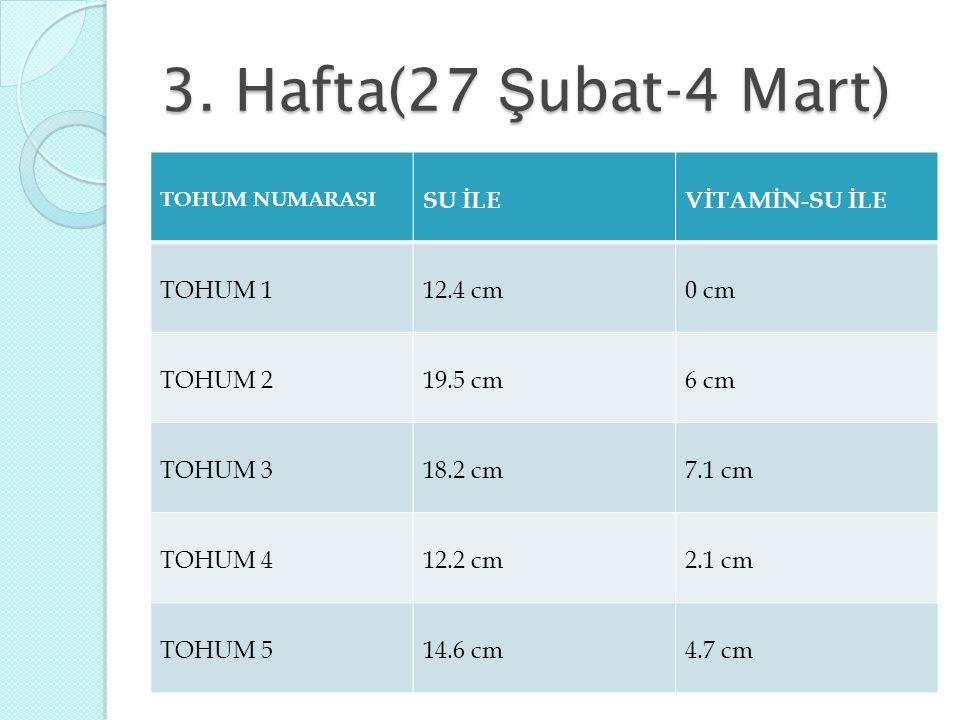 3. Hafta(27 Ş ubat-4 Mart) TOHUM NUMARASI SU İLEVİTAMİN-SU İLE TOHUM 112.4 cm0 cm TOHUM 219.5 cm6 cm TOHUM 318.2 cm7.1 cm TOHUM 412.2 cm2.1 cm TOHUM 5