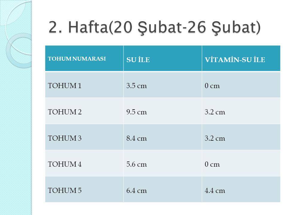 2. Hafta(20 Ş ubat-26 Ş ubat) TOHUM NUMARASI SU İLEVİTAMİN-SU İLE TOHUM 13.5 cm0 cm TOHUM 29.5 cm3.2 cm TOHUM 38.4 cm3.2 cm TOHUM 45.6 cm0 cm TOHUM 56