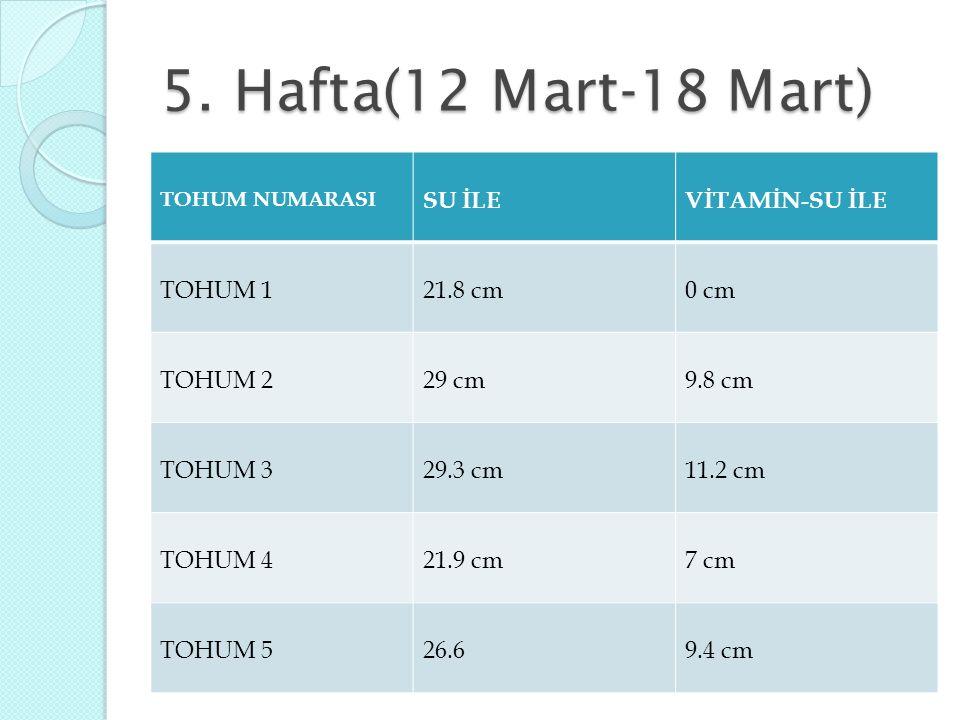 5. Hafta(12 Mart-18 Mart) TOHUM NUMARASI SU İLEVİTAMİN-SU İLE TOHUM 121.8 cm0 cm TOHUM 229 cm9.8 cm TOHUM 329.3 cm11.2 cm TOHUM 421.9 cm7 cm TOHUM 526