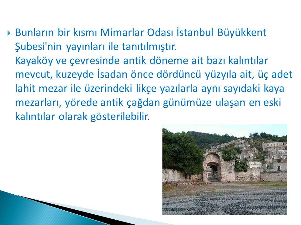  Bunların bir kısmı Mimarlar Odası İstanbul Büyükkent Şubesi'nin yayınları ile tanıtılmıştır. Kayaköy ve çevresinde antik döneme ait bazı kalıntılar