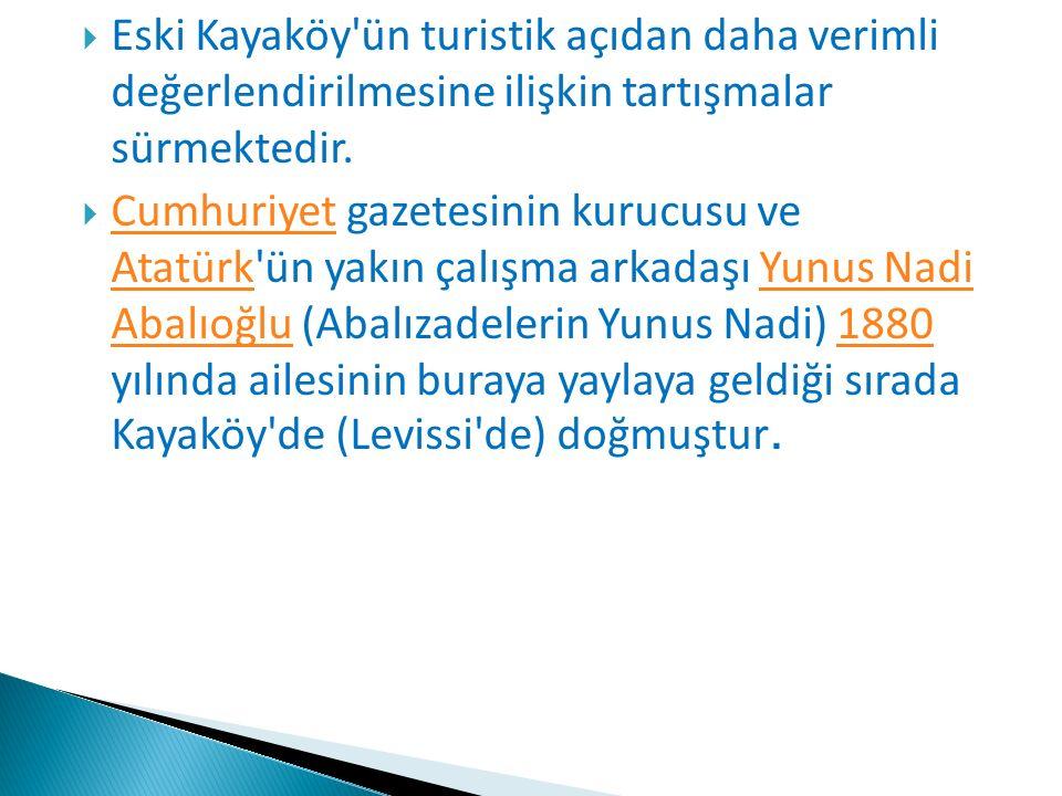  Eski Kayaköy'ün turistik açıdan daha verimli değerlendirilmesine ilişkin tartışmalar sürmektedir.  Cumhuriyet gazetesinin kurucusu ve Atatürk'ün ya