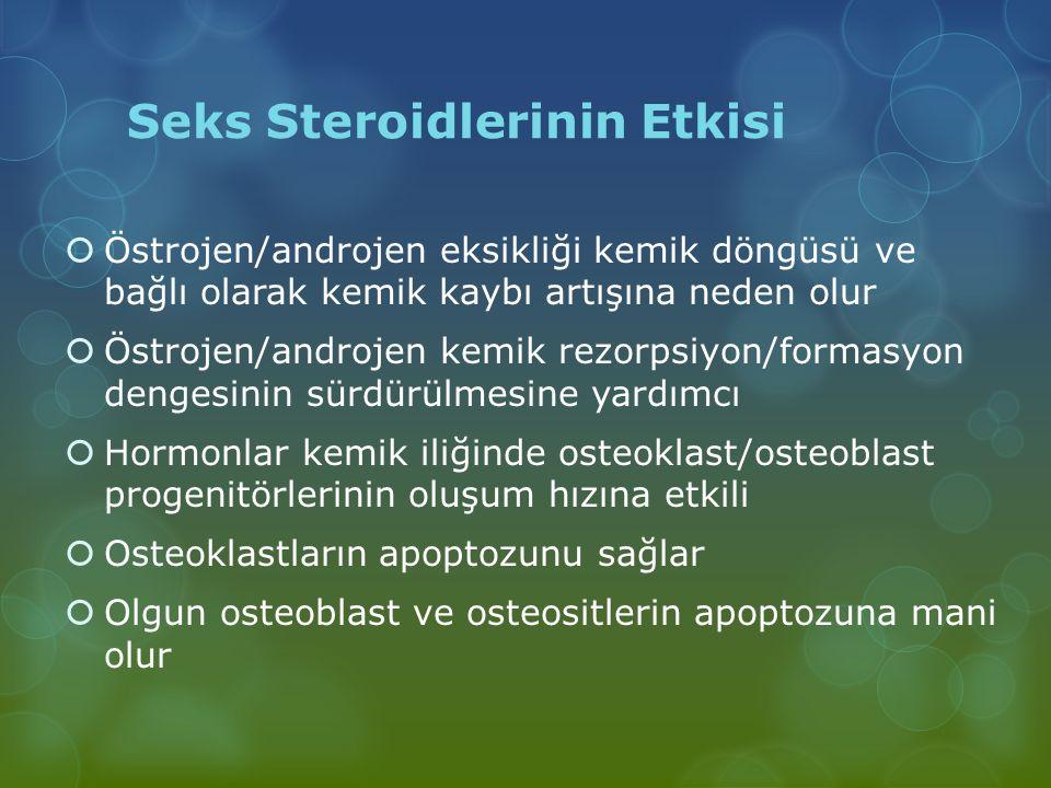 Seks Steroidlerinin Etkisi  Östrojen/androjen eksikliği kemik döngüsü ve bağlı olarak kemik kaybı artışına neden olur  Östrojen/androjen kemik rezor