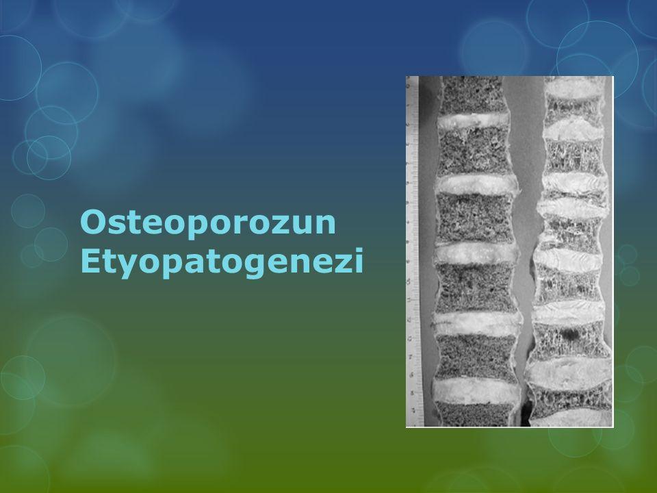 Osteoporozun Etyopatogenezi