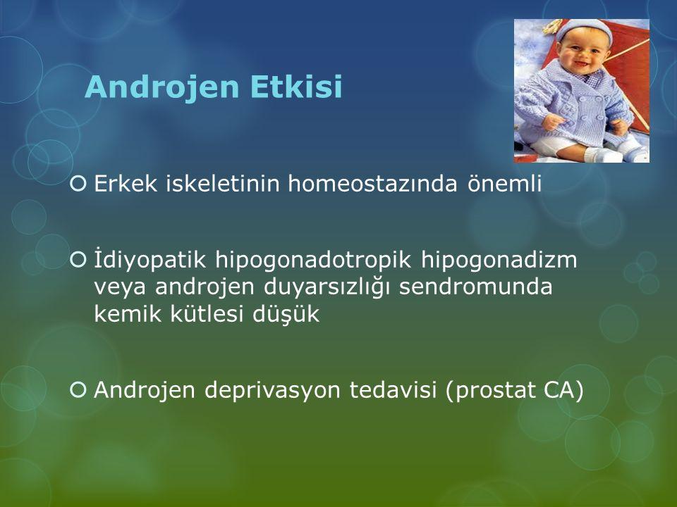 Androjen Etkisi  Erkek iskeletinin homeostazında önemli  İdiyopatik hipogonadotropik hipogonadizm veya androjen duyarsızlığı sendromunda kemik kütle
