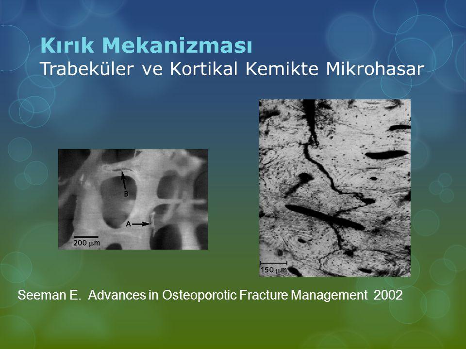 Seeman E. Advances in Osteoporotic Fracture Management 2002 Kırık Mekanizması Trabeküler ve Kortikal Kemikte Mikrohasar
