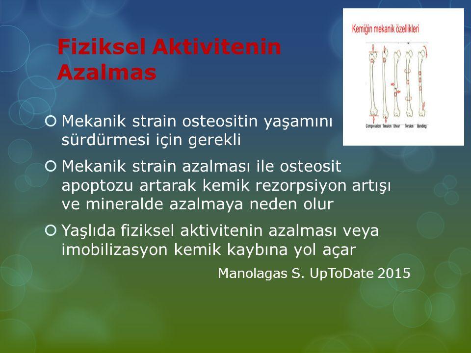 Fiziksel Aktivitenin Azalmas  Mekanik strain osteositin yaşamını sürdürmesi için gerekli  Mekanik strain azalması ile osteosit apoptozu artarak kemi