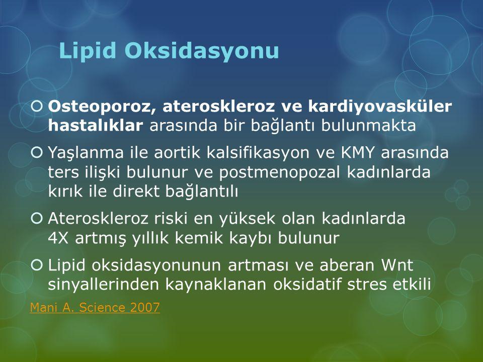 Lipid Oksidasyonu  Osteoporoz, ateroskleroz ve kardiyovasküler hastalıklar arasında bir bağlantı bulunmakta  Yaşlanma ile aortik kalsifikasyon ve KM