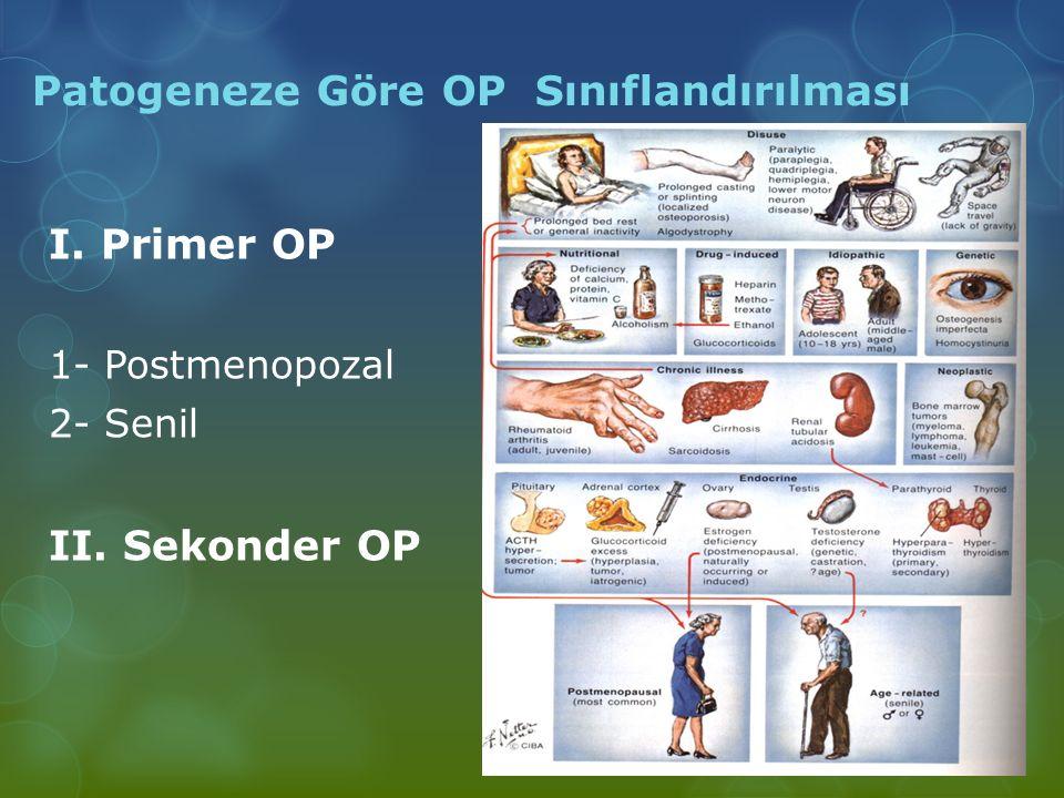 Patogeneze Göre OP Sınıflandırılması I. Primer OP 1- Postmenopozal 2- Senil II. Sekonder OP
