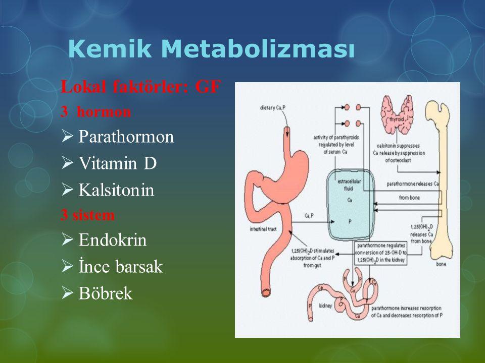 Kemik Metabolizması Lokal faktörler: GF 3 hormon  Parathormon  Vitamin D  Kalsitonin 3 sistem  Endokrin  İnce barsak  Böbrek