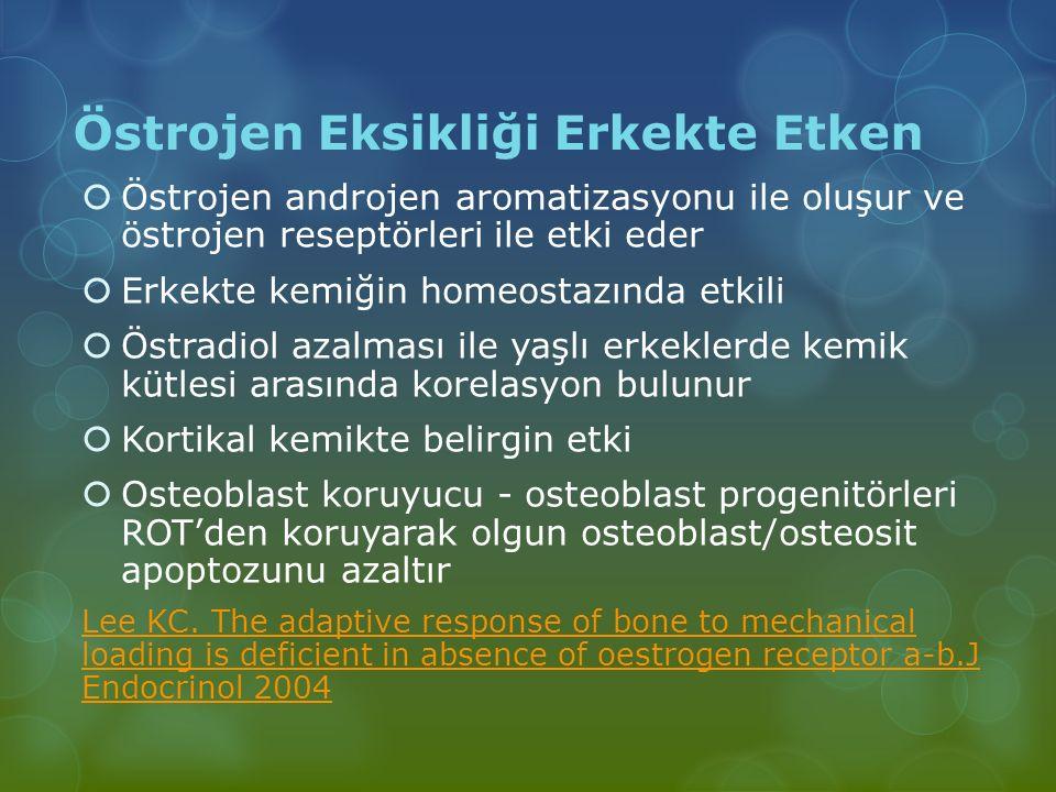 Östrojen Eksikliği Erkekte Etken  Östrojen androjen aromatizasyonu ile oluşur ve östrojen reseptörleri ile etki eder  Erkekte kemiğin homeostazında