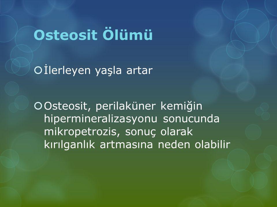 Osteosit Ölümü  İlerleyen yaşla artar  Osteosit, perilaküner kemiğin hipermineralizasyonu sonucunda mikropetrozis, sonuç olarak kırılganlık artmasın