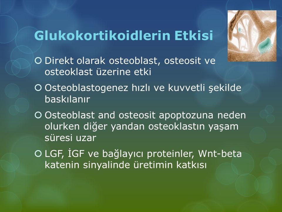 Glukokortikoidlerin Etkisi  Direkt olarak osteoblast, osteosit ve osteoklast üzerine etki  Osteoblastogenez hızlı ve kuvvetli şekilde baskılanır  O