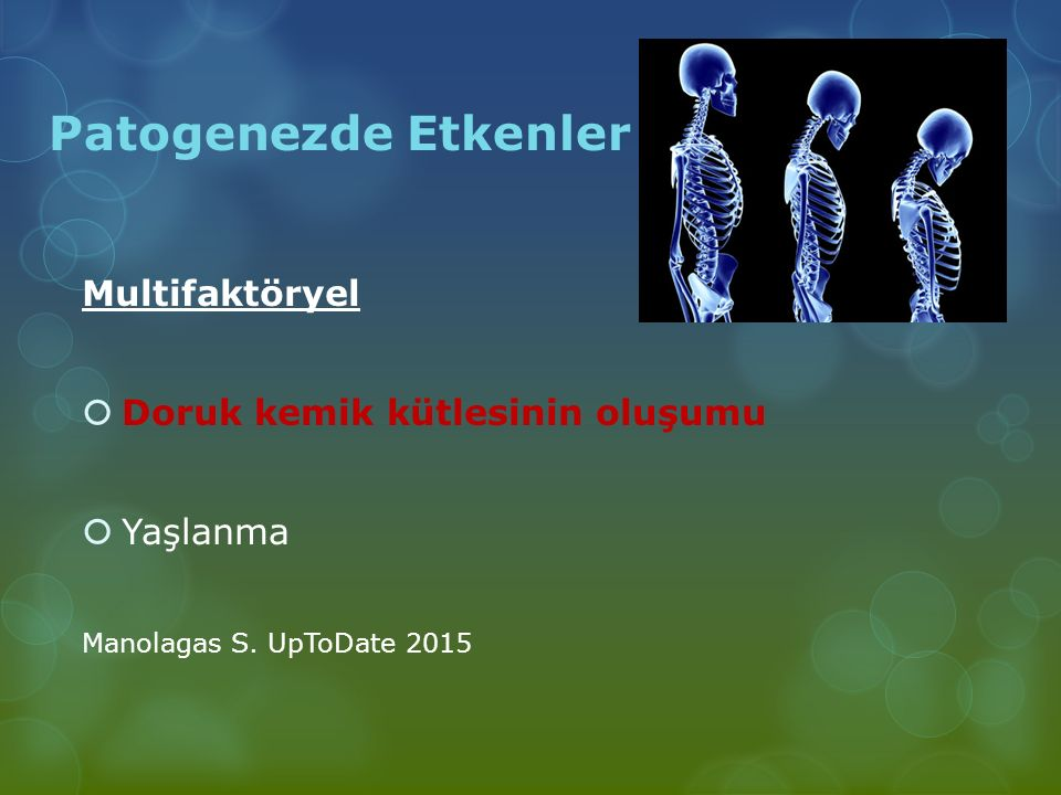 Patogenezde Etkenler Multifaktöryel  Doruk kemik kütlesinin oluşumu  Yaşlanma Manolagas S. UpToDate 2015