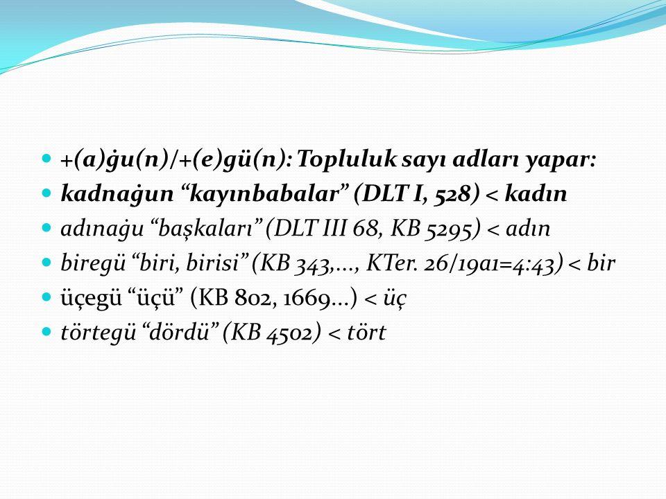 """+(a)ġu(n)/+(e)gü(n): Topluluk sayı adları yapar: kadnaġun """"kayınbabalar"""" (DLT I, 528) < kadın adınaġu """"başkaları"""" (DLT III 68, KB 5295) < adın biregü"""
