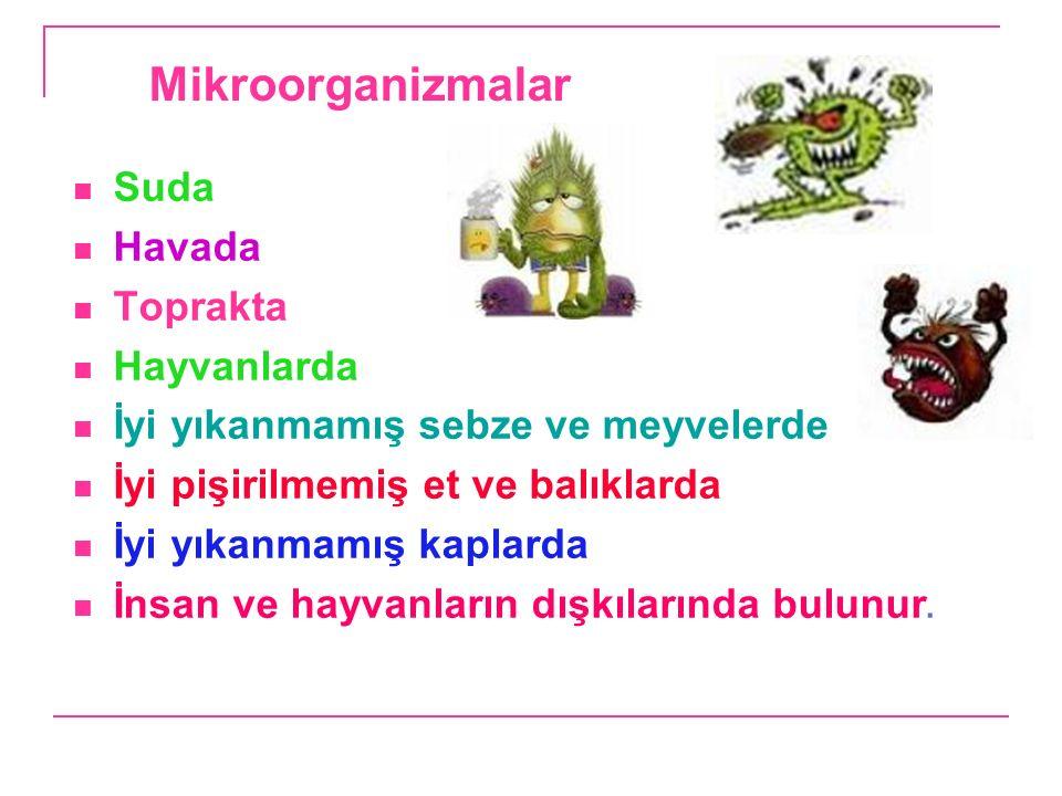 Mikroorganizmalar Suda Havada Toprakta Hayvanlarda İyi yıkanmamış sebze ve meyvelerde İyi pişirilmemiş et ve balıklarda İyi yıkanmamış kaplarda İnsan ve hayvanların dışkılarında bulunur.