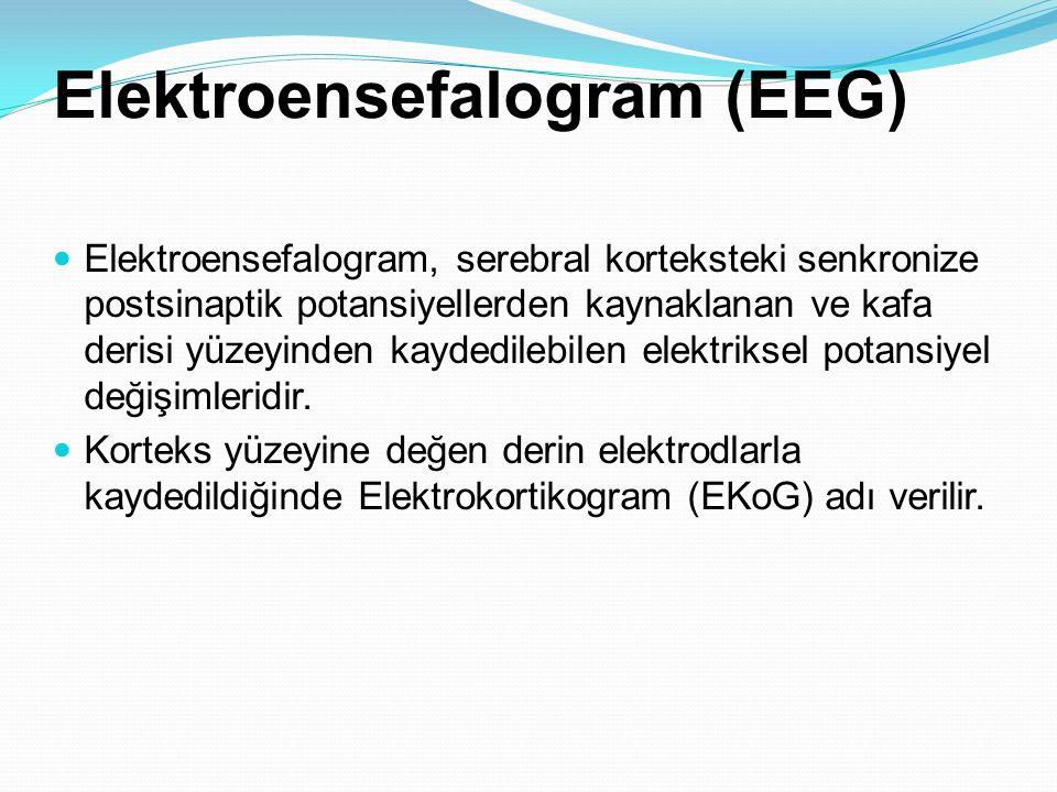Elektroensefalogram (EEG) Elektroensefalogram, serebral korteksteki senkronize postsinaptik potansiyellerden kaynaklanan ve kafa derisi yüzeyinden kay