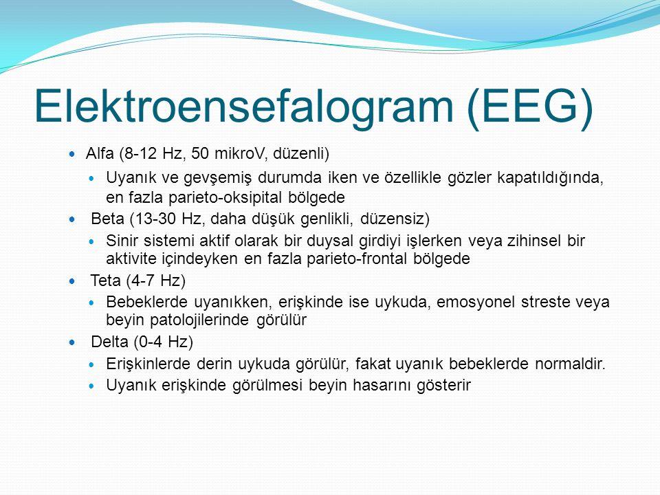 Elektroensefalogram (EEG) Alfa (8-12 Hz, 50 mikroV, düzenli) Uyanık ve gevşemiş durumda iken ve özellikle gözler kapatıldığında, en fazla parieto-oksi