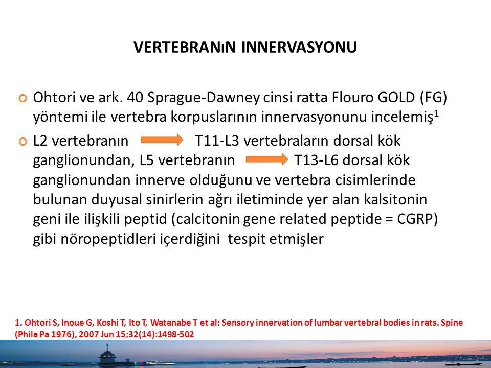 VERTEBRANıN INNERVASYONU Ohtori ve ark. 40 Sprague-Dawney cinsi ratta Flouro GOLD (FG) yöntemi ile vertebra korpuslarının innervasyonunu incelemiş 1 L