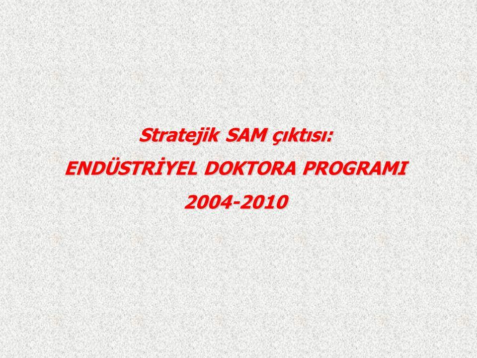 Stratejik SAM çıktısı: ENDÜSTRİYEL DOKTORA PROGRAMI 2004-2010