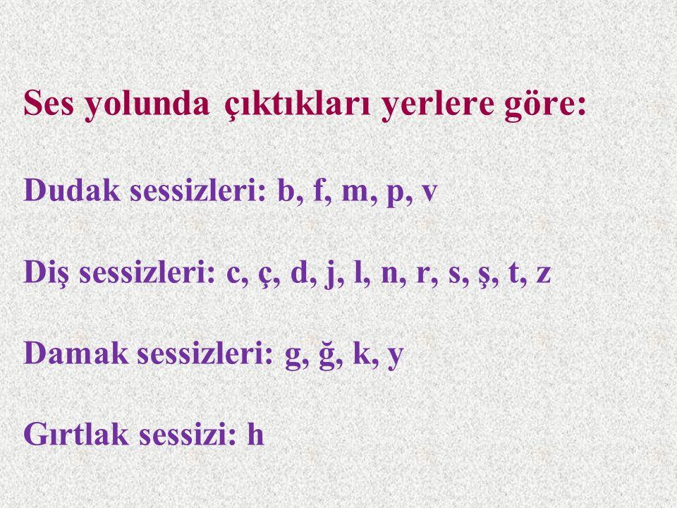Ses yolunda çıktıkları yerlere göre: Dudak sessizleri: b, f, m, p, v Diş sessizleri: c, ç, d, j, l, n, r, s, ş, t, z Damak sessizleri: g, ğ, k, y Gırt
