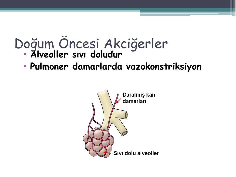 Yenidoğan canlandırmasında en önemli ve etkin girişim pozitif basınçlı ventilasyondur. ! 48