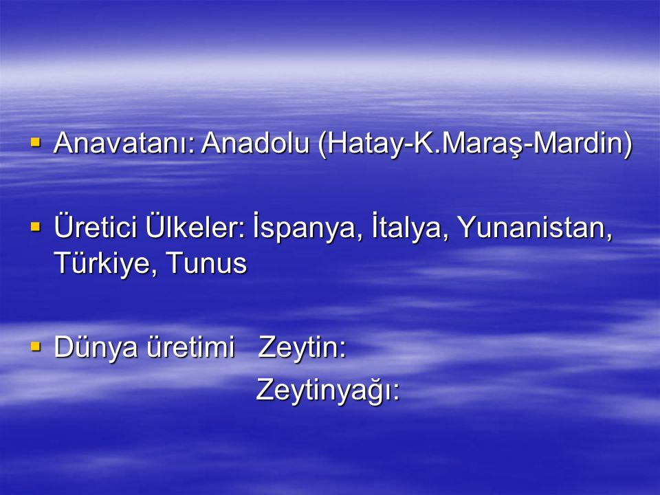  Anavatanı: Anadolu (Hatay-K.Maraş-Mardin)  Üretici Ülkeler: İspanya, İtalya, Yunanistan, Türkiye, Tunus  Dünya üretimi Zeytin: Zeytinyağı: Zeytiny