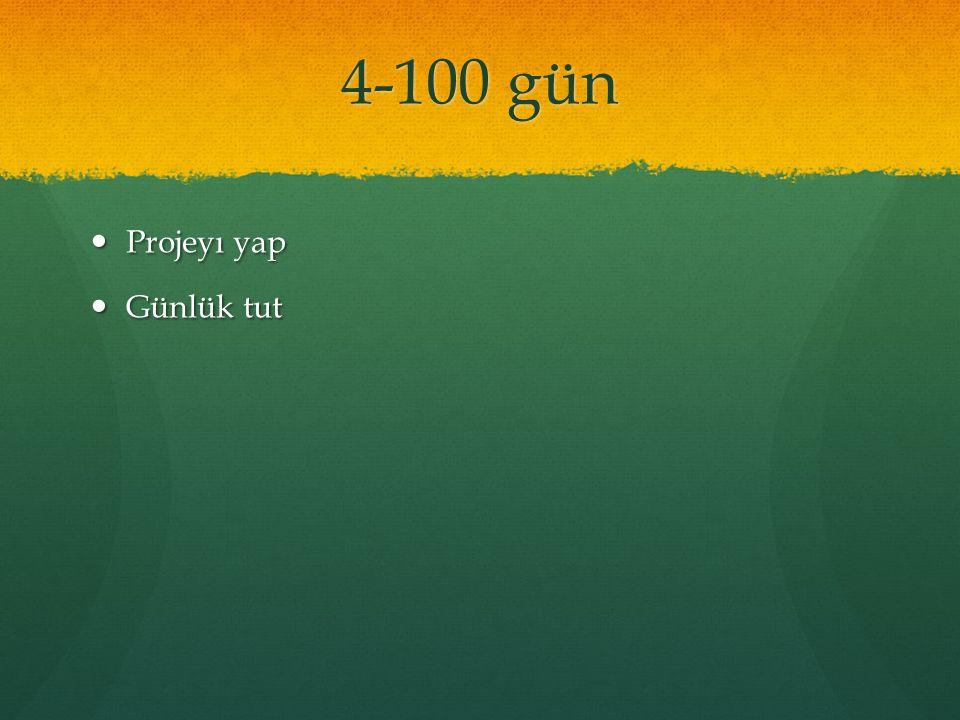4-100 gün Projeyı yap Projeyı yap Günlük tut Günlük tut