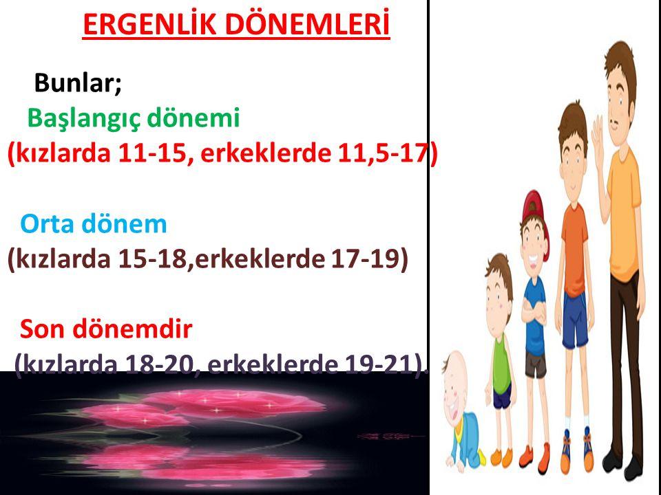 ERGENLİK DÖNEMLERİ Bunlar; Başlangıç dönemi (kızlarda 11-15, erkeklerde 11,5-17) Orta dönem (kızlarda 15-18,erkeklerde 17-19) Son dönemdir (kızlarda 1