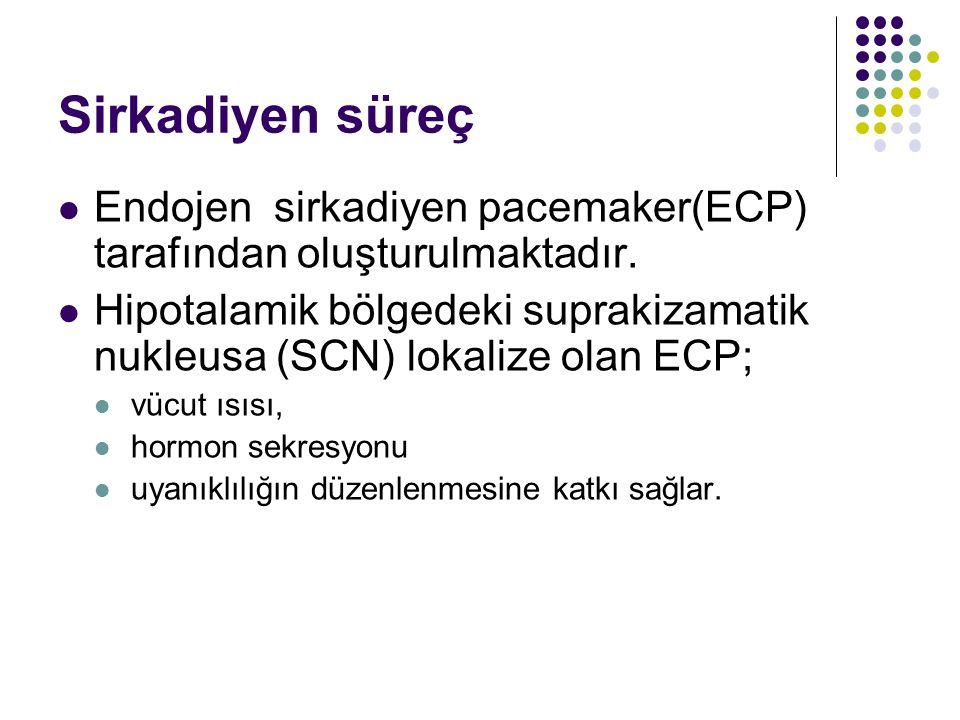Sirkadiyen süreç Endojen sirkadiyen pacemaker(ECP) tarafından oluşturulmaktadır. Hipotalamik bölgedeki suprakizamatik nukleusa (SCN) lokalize olan ECP