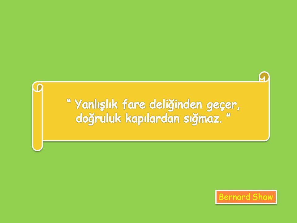 Oniki Hayvanlı Türk Takvimi'nde bir Güneş yılı 365 gün 5 saat kabul edilmiştir. DY Celali Takvimin başlangıcı hicri 1079'dur.DY Hicri Takvim, Türkleri