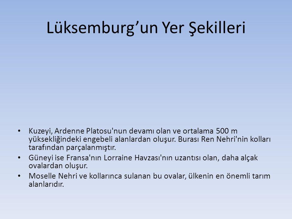 Lüksemburg'un Yer Şekilleri Kuzeyi, Ardenne Platosu'nun devamı olan ve ortalama 500 m yüksekliğindeki engebeli alanlardan oluşur. Burası Ren Nehri'nin