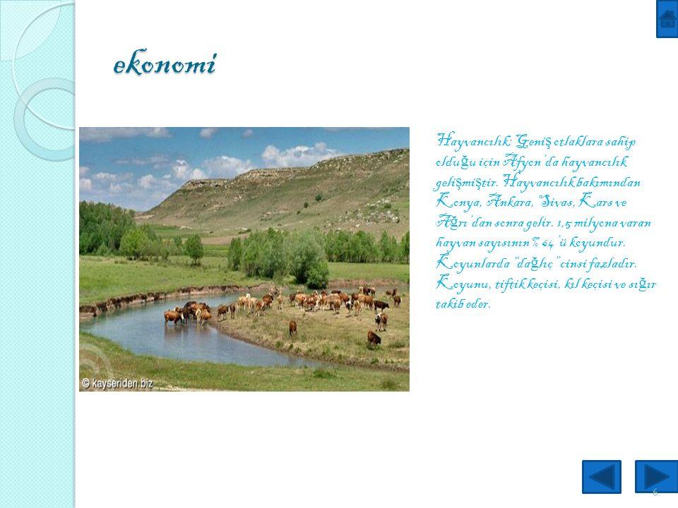 ekonomi 6 Hayvancılık: Geni ş otlaklara sahip oldu ğ u için Afyon'da hayvancılık geli ş mi ş tir.