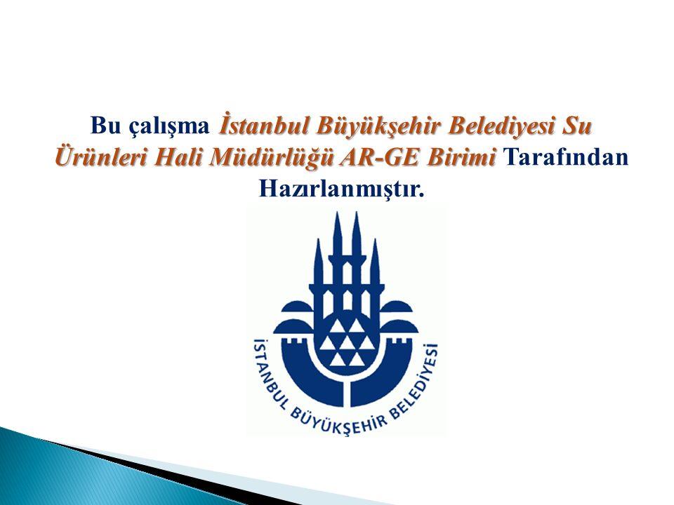 İstanbul Büyükşehir Belediyesi Su Ürünleri Hali MüdürlüğüAR-GE Birimi Bu çalışma İstanbul Büyükşehir Belediyesi Su Ürünleri Hali Müdürlüğü AR-GE Birim