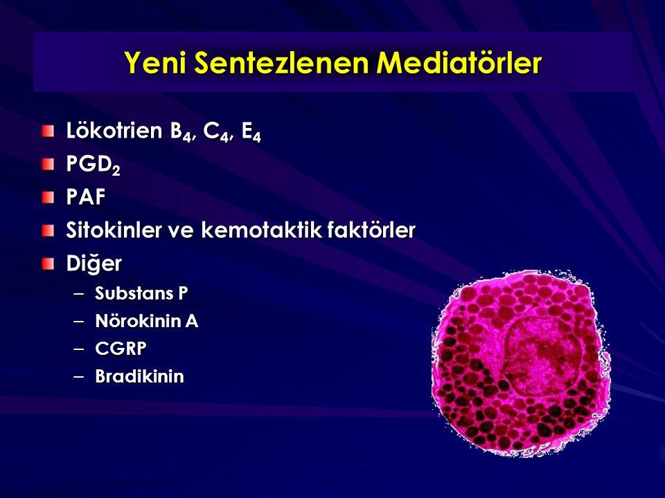 Yeni Sentezlenen Mediatörler Lökotrien B 4, C 4, E 4 PGD 2 PAF Sitokinler ve kemotaktik faktörler Diğer – Substans P – Nörokinin A – CGRP – Bradikinin