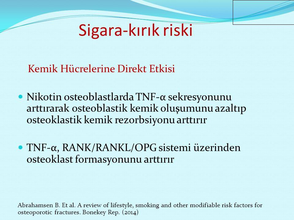 Sigara-kırık riski Kemik Hücrelerine İndirekt Etkisi Kortizol düzeyini arttırır Östrojen düzeyini azaltır Bağırsaktan Ca emilimini azaltır İçeriğindeki benzopiren ve tetraklorodibenzodioksin gibi toksik bileşenler osteoklast formasyonunu arttırır