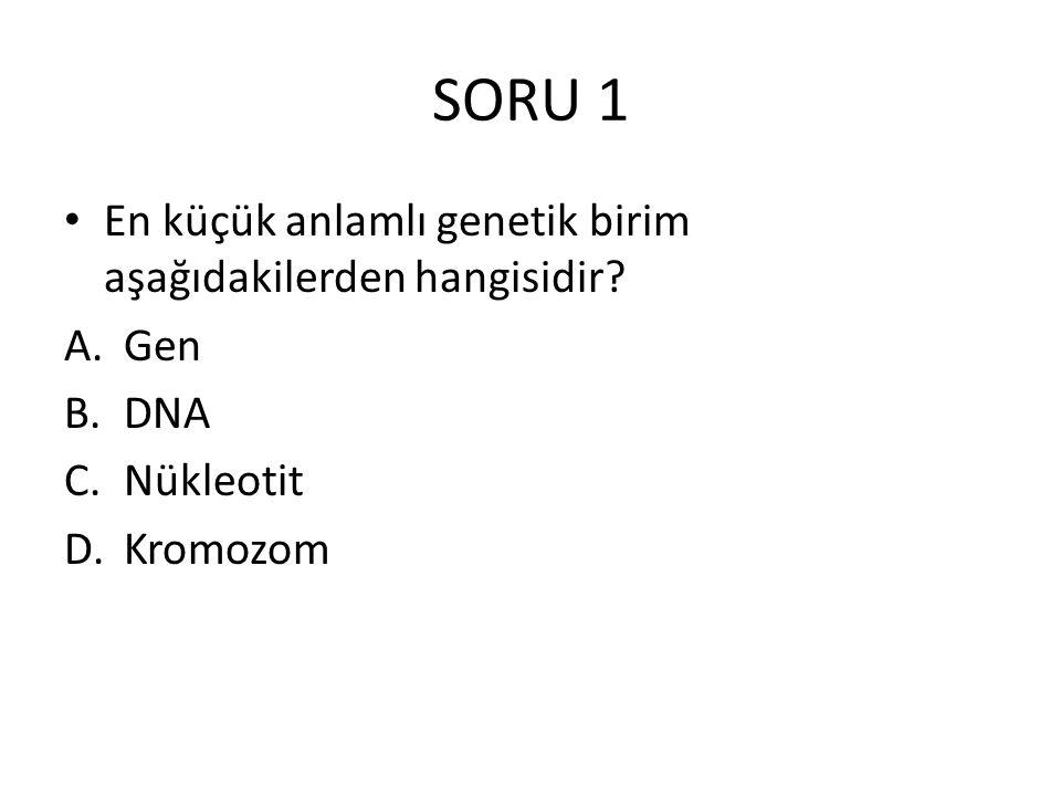 SORU 1 En küçük anlamlı genetik birim aşağıdakilerden hangisidir? A.Gen B.DNA C.Nükleotit D.Kromozom