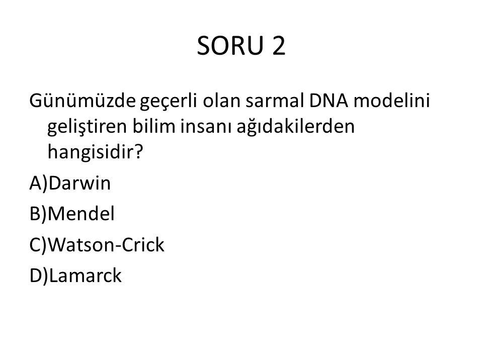 SORU 2 Günümüzde geçerli olan sarmal DNA modelini geliştiren bilim insanı ağıdakilerden hangisidir? A)Darwin B)Mendel C)Watson-Crick D)Lamarck