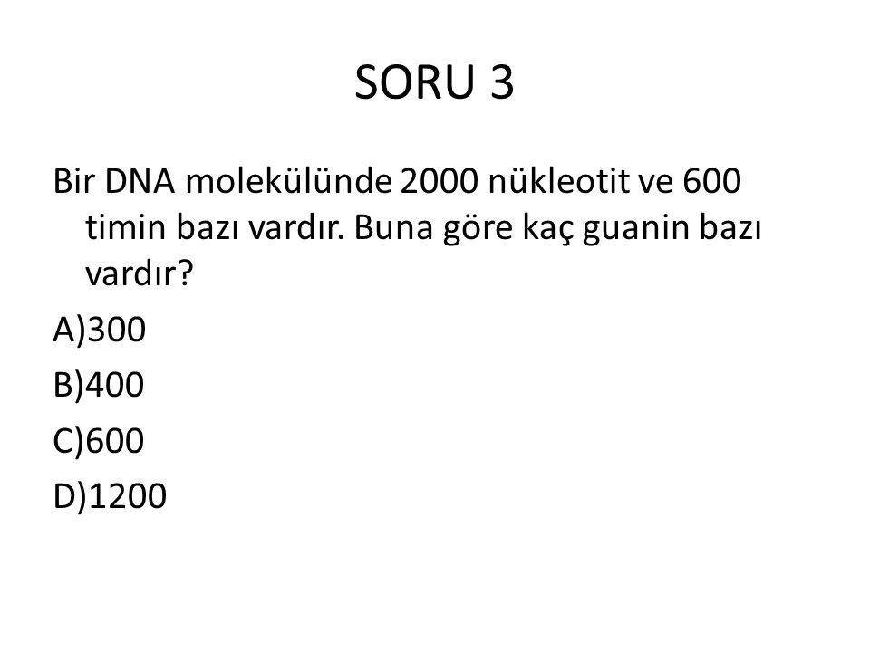 SORU 3 Bir DNA molekülünde 2000 nükleotit ve 600 timin bazı vardır. Buna göre kaç guanin bazı vardır? A)300 B)400 C)600 D)1200